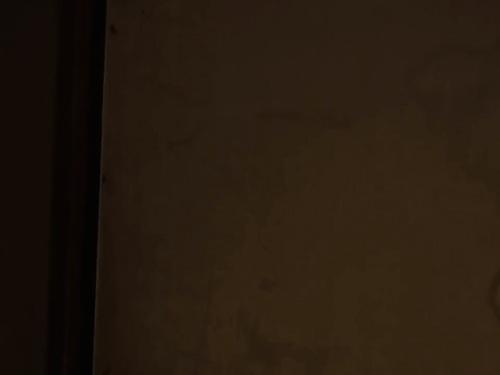 【寝取られ】五十路おばさんの夜這い近親相姦オナニーレイプ